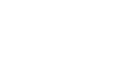 Prime RE Group - logo